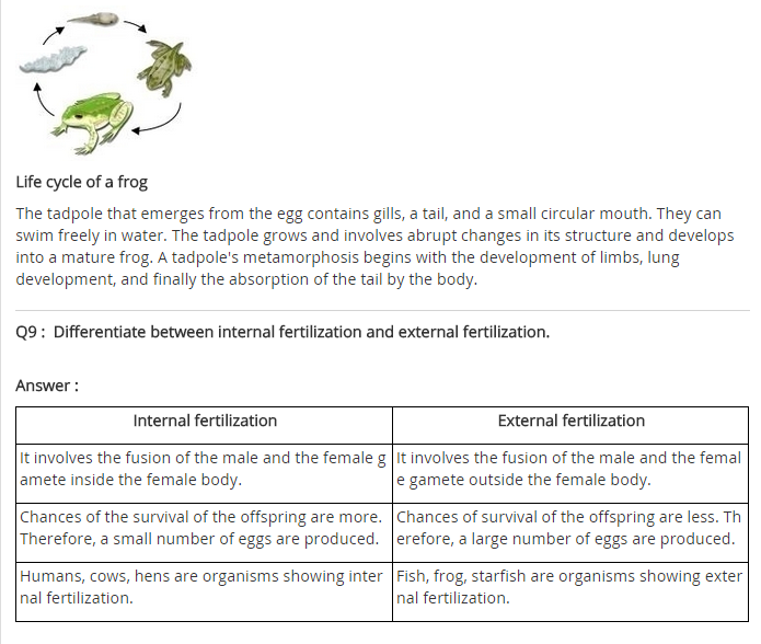 NCERT Solutions for class 8 Science Chapter 9 Reproduction in Animals